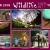 "Tierpark . Foto Openair ""Wildlife - Tierpark Suhl"" 2018 (Fotos: Jens Gutberlet, Manuela Hahnebach, Uli Knabe, Silke Maruhn, Sylvia Scherpinski, Andreas Schmidt, Peter Sokolowski, Stadtjugendring Suhl)"