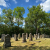 2020 Grünes Band: Jüdischer Friedhof bei Berkach (Foto: Manuela Hahnebach)