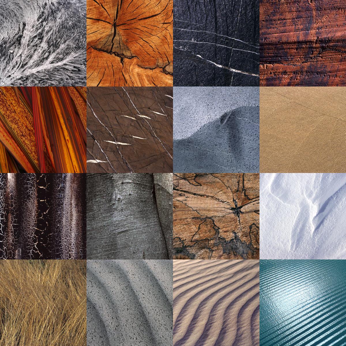 Fotosynthese: natürliche Strukturen (Fotos & Gestaltung: Andreas Kuhrt)